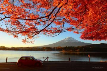 Du Lịch Nhật Bản (Cung Đường Vàng): Tokyo - Fuji - Kyoto - Osaka