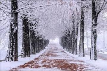 TRẢI NGHIỆM MÙA HOA TUYẾT HÀN QUỐC: SEOUL - NAMI - LOTTE WORLD - TRƯỢT TUYẾT