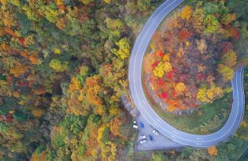 Nhật Bản Mùa Lá Đỏ Trên Con Đèo 48 Khúc Cua