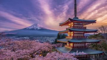 TOUR DU XUÂN 2020 NHẬT BẢN: TOKYO - PHÚ SĨ - NAGOYA - KYOTO - OSAKA