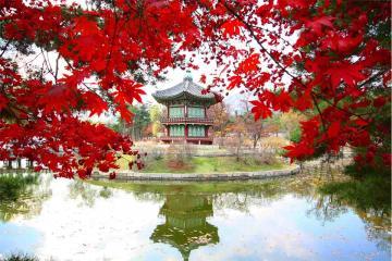 Sức Cuốn Hút Của 4 Mùa Ở Hàn Quốc