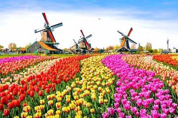 Hà Lan - những điều ít người biết