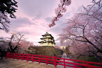 DU XUÂN NHẬT BẢN - CUNG ĐƯỜNG VÀNG(Tokyo – Núi Phú Sĩ – Kyoto – Osaka – Shirakawago)