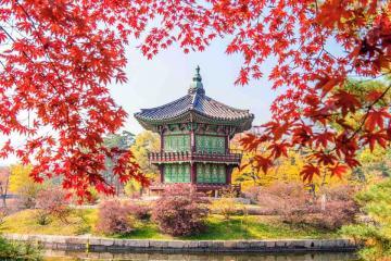 Du Lịch Hàn Quốc Mùa Thu: Seoul - Nami - Everland - Nanta Show