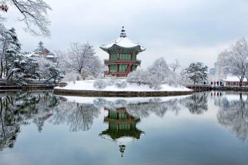 Du Lịch Hàn Quốc Mùa Đông: Seoul - Nami - Khu Trượt Tuyết Jisan Resort