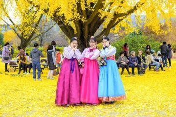 Top 5 trải nghiệm thú vị bạn nên biết khi đến du lịch Hàn Quốc vào mùa thu
