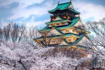 NGÀY 3: HAKONE - HỒ ASHINO - TOKYO (Ăn sáng, trưa, tối)