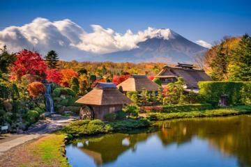 NGÀY 3: TOKYO - FUJI - SHIZUOKA - TOYOHASHI (Ăn sáng, trưa, tối)
