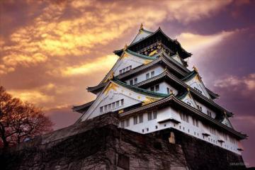 NGÀY 5: OSAKA - CITY TOUR (Ăn sáng, trưa, tối)
