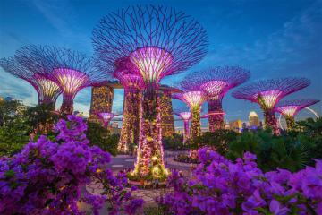 NGÀY 02: SINGAPORE - GARDEN BY THE BAY - SENTOSA - SPECTRA SHOW (Ăn sáng, trưa, tối)