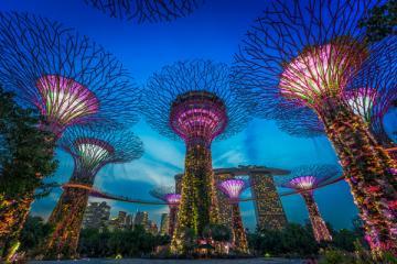 NGÀY 2: SINGAPORE - GARDEN BY THE BAY - SENTOSA - INDONESIA (Ăn sáng, trưa, tối)