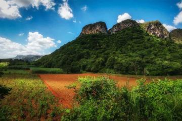NGÀY 4: HAVANA - PINAR DEL RIO – CIGAR FACTORY – VINALES VALLEY – HAVANA (Ăn ba bữa)