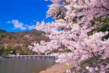 NGÀY 2 (01/04) : KANSAI – KYOTO - SHIGA
